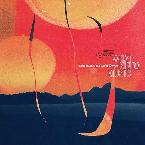 Tom Misch What Kinda Music Indietronic, Indie Pop (2020)