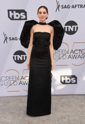 Alison Brie at the 25th Annual Screen Actors Guild Awards in Los Angeles - 1/27/19