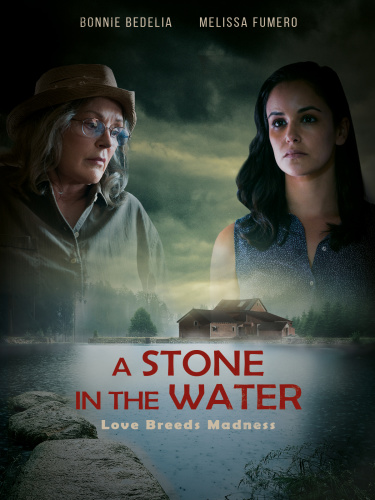 A Stone in the Water 2019 HDRip XviD AC3-EVO