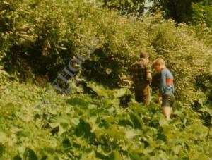 Lars i porten 1984