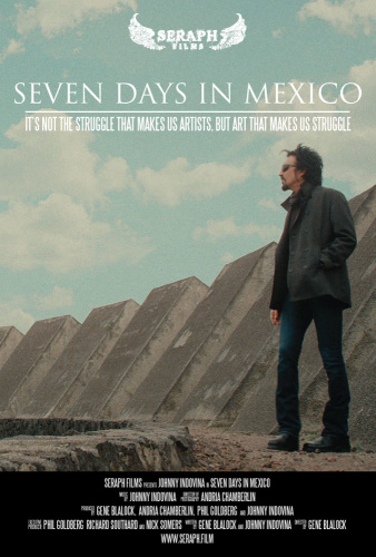 Seven Days in Mexico 2020 WEBRip XviD MP3-XVID