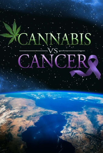Cannabis vs Cancer 2019 1080p AMZN Rip DDP2 0 -TEPES