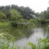 Hiking Tin Shui Wai - 頁 14 8gN3SBI1_t