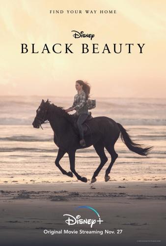 Black Beauty 2020 HDRip XviD AC3-EVO