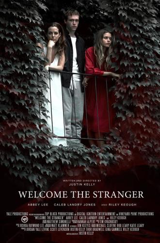 Welcome the Stranger 2018 1080p WEBRip x264-RARBG
