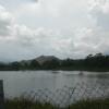 Hiking Tin Shui Wai - 頁 14 JjsqA1Tl_t