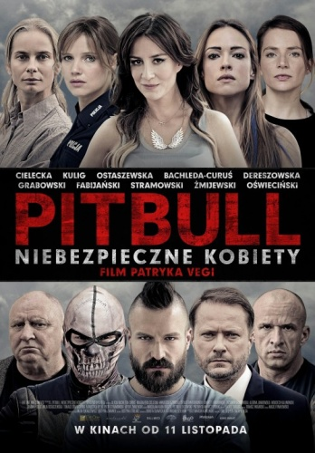 Pitbull Tough Women (2016) 720p BluRay [YTS]