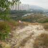 Hiking Tin Shui Wai - 頁 19 ZCfojTgc_t