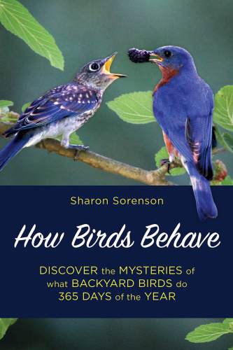 How Birds Behave - Sharon Sorenson