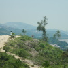Hiking Tin Shui Wai - 頁 14 ZuAdbdOo_t