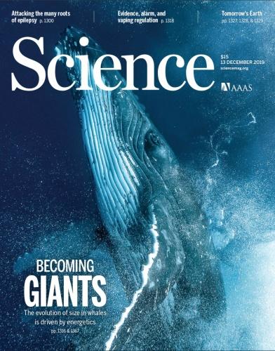 Science - 13 December 2019 UserUpload Net