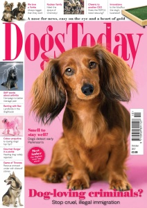 Dogs Today UK  October (2017)