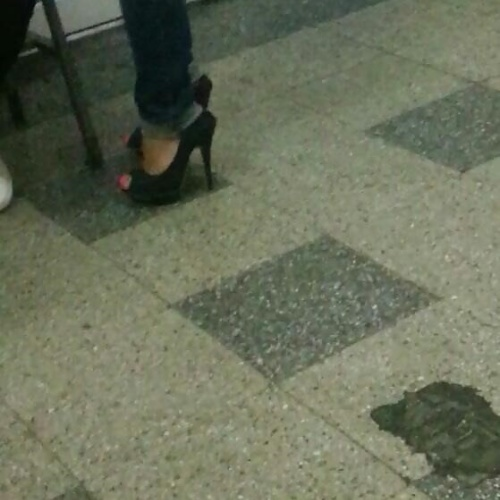 Old women feet porn