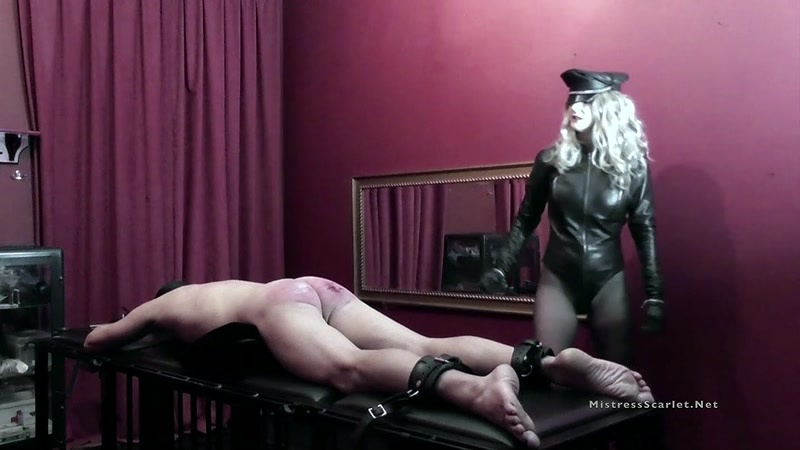 Domina Scarlet starring in video (Caning The Masochist) [HD 810P]