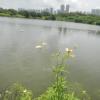 Hiking Tin Shui Wai - 頁 14 XiZ5kQFj_t