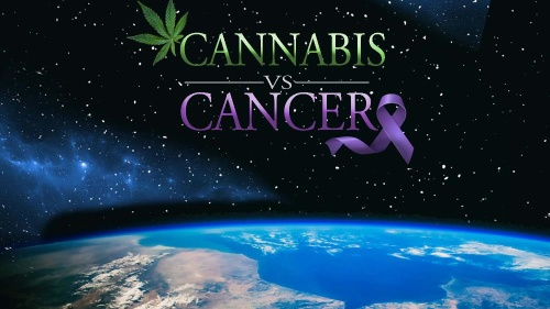 Cannabis vs Cancer 2020 1080p AMZN WEBRip DDP2 0 x264-NOGRP