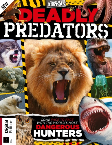 World of Animals Deadly Predators (2019)