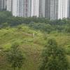 Hiking Tin Shui Wai - 頁 14 JUDw4RZk_t