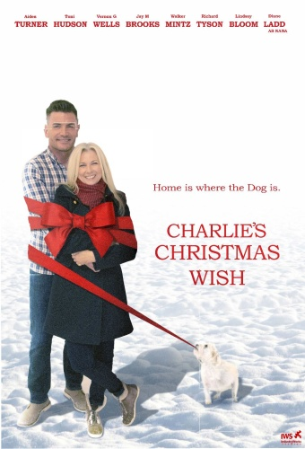 Charlies Christmas Wish 2020 HDRip XviD AC3-EVO