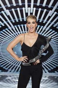 Katy Perry -                   ''American Idol'' Portraits.