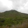 Hiking Tin Shui Wai - 頁 14 1t1HvBGi_t