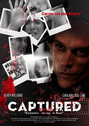 Captured 2019 1080p WEB-DL H264 AC3-EVO