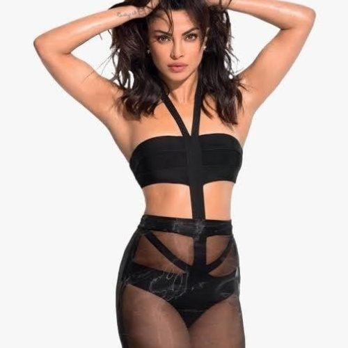 Priyanka chopra nude big boobs
