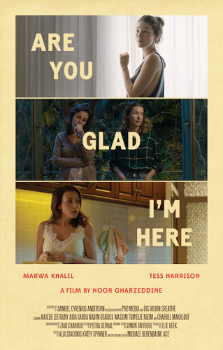 Are You Glad Im Here (2018) WEB-DL (DDP2 0) X264 Solar