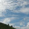 Hiking Tin Shui Wai - 頁 14 T2GeH6Iv_t