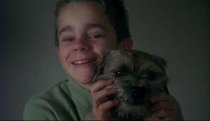 My life as a dog 1985