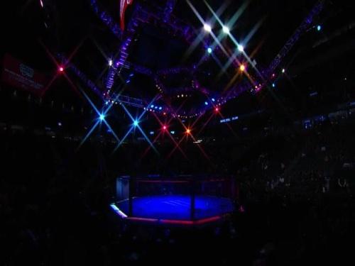 UFC 246 Prelims 480p -mSD