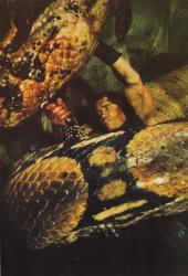 Конан-варвар / Conan the Barbarian (Арнольд Шварценеггер, 1982) - Страница 2 Vfd3fh1V_t