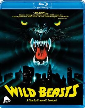 Wild Beasts - Belve feroci (1984) BD-Untouched 1080p AVC DTS HD ENG AC3 iTA-ENG