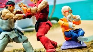 Dragon Ball - S.H. Figuarts (Bandai) Wbv2ONt8_t