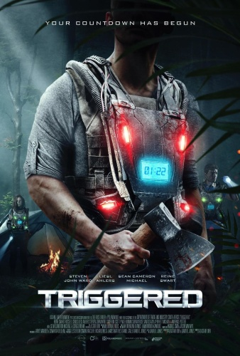 Triggered 2020 1080p WEB-DL DD5 1 H 264-EVO