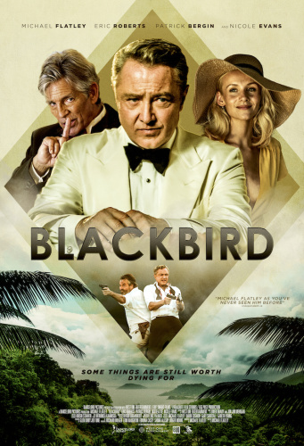 Blackbird 2020 HDRip XviD AC3-EVO