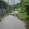 Hiking Tin Shui Wai - 頁 14 9OTaP4ZS_t
