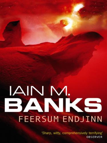 1994 Feersum Enjinn - Iain M  Banks