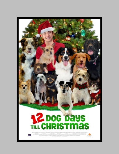 12 Dog Days Till Christmas (2014) 720p HDTVRip x264 ESubs [Dual Audio][Hindi+English]