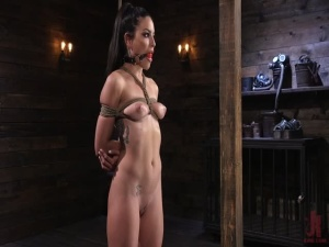 Kissa Sins - Kissa Sins is Dominated in Grueling Bondage - BDSM, Punishment, Bondage