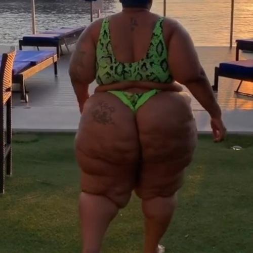 Big booty black bbw anal