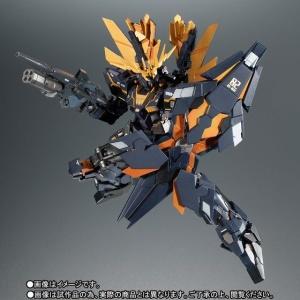 Gundam - Metal Robot Side MS (Bandai) - Page 3 G9bkfpyi_t