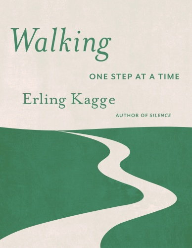 Walking  One Step at a Time by Erling Kagge