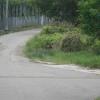 Hiking Tin Shui Wai - 頁 14 YCyDU80c_t