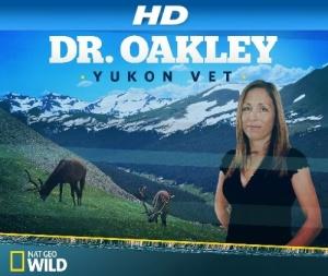 Dr Oakley Yukon Vet S07E08 Running with Reindeer 720p WEBRip x264-CAFFEiNE
