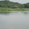 Hiking Tin Shui Wai - 頁 14 TufZ8ASV_t