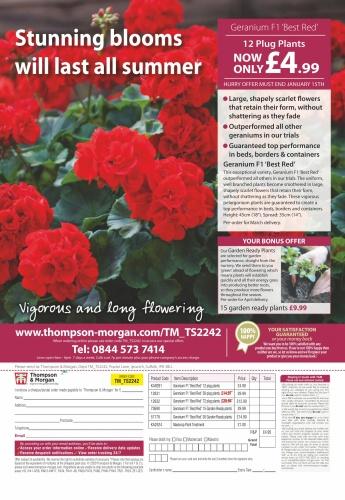 Amateur Gardening - 04 January (2020)