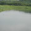 Hiking Tin Shui Wai - 頁 14 QtkTn4oj_t
