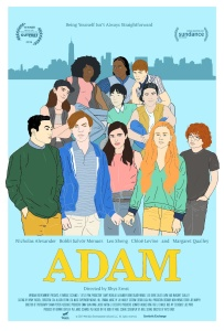 Adam 2019 HDRip XviD AC3-EVO