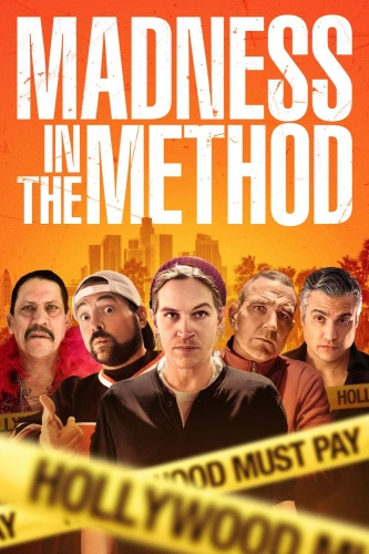 Madness In The Method 2019 DVDRip x264-RedBlade